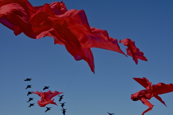 Flowx silk kites by WindFire Designs Tim Elverston