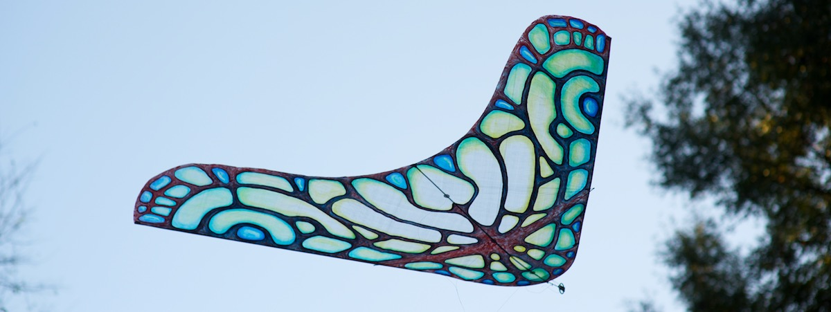 Morpho Glider made for Jose Sainz by WindFire Designs