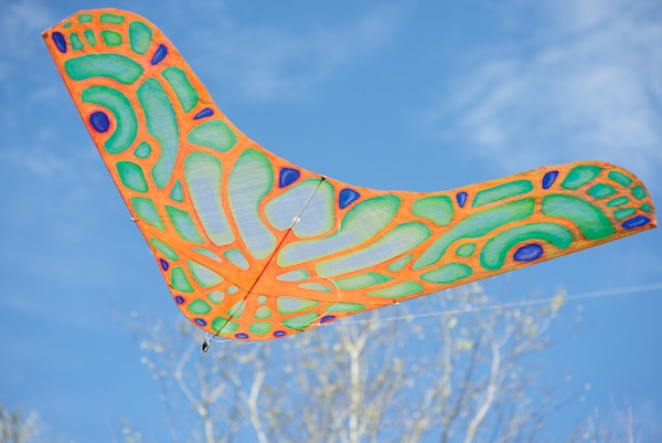 Oil painted morpho glider kite - front light