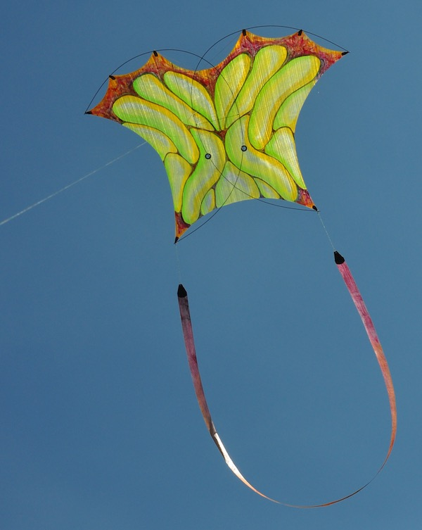Photon kite painted by ruth whiting and designed by tim elverston