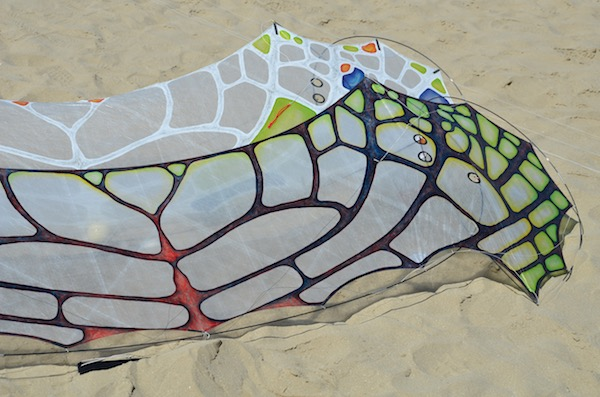 Two WindFire Flames in the sand - quadline kites designed by Tim Elverston and painted by Ruth Whiting