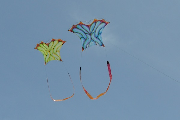 Mini Photon kite designed by Tim Elverston and painted by Ruth Whiting | WindFire Designs